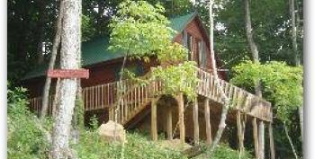 Bear Cozy Cabin on Ridge