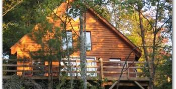 Hidden Forest upper area and deck