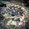 thumbnail campfire at the gorge