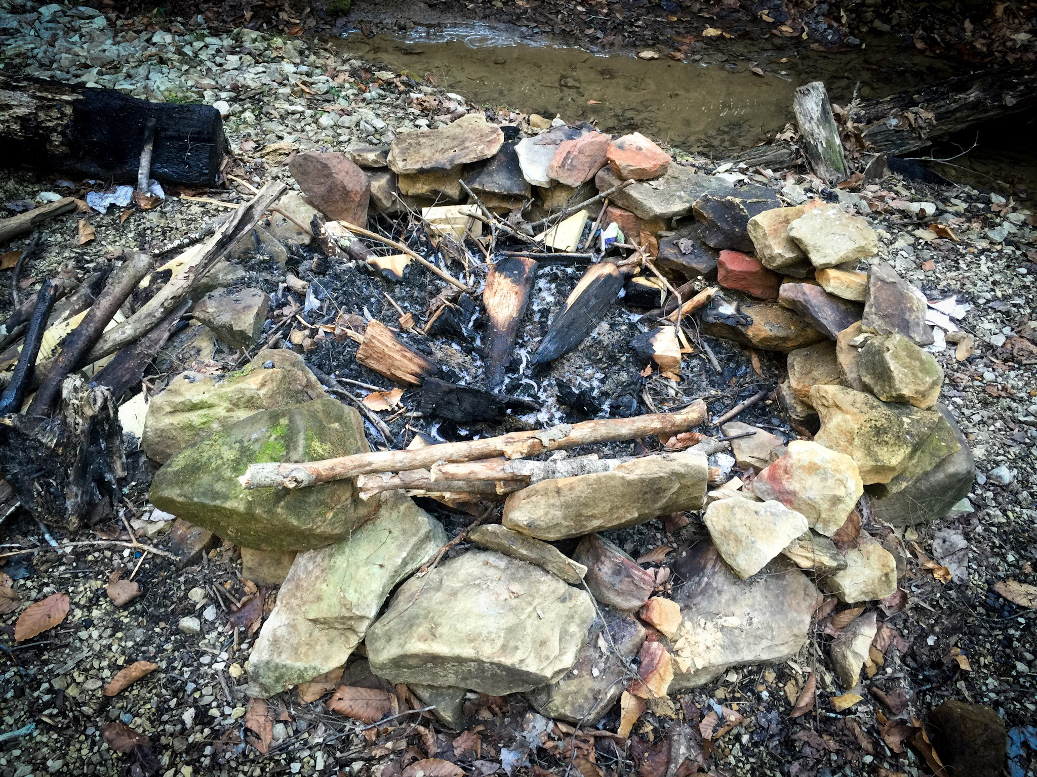 campfire at the red river gorge