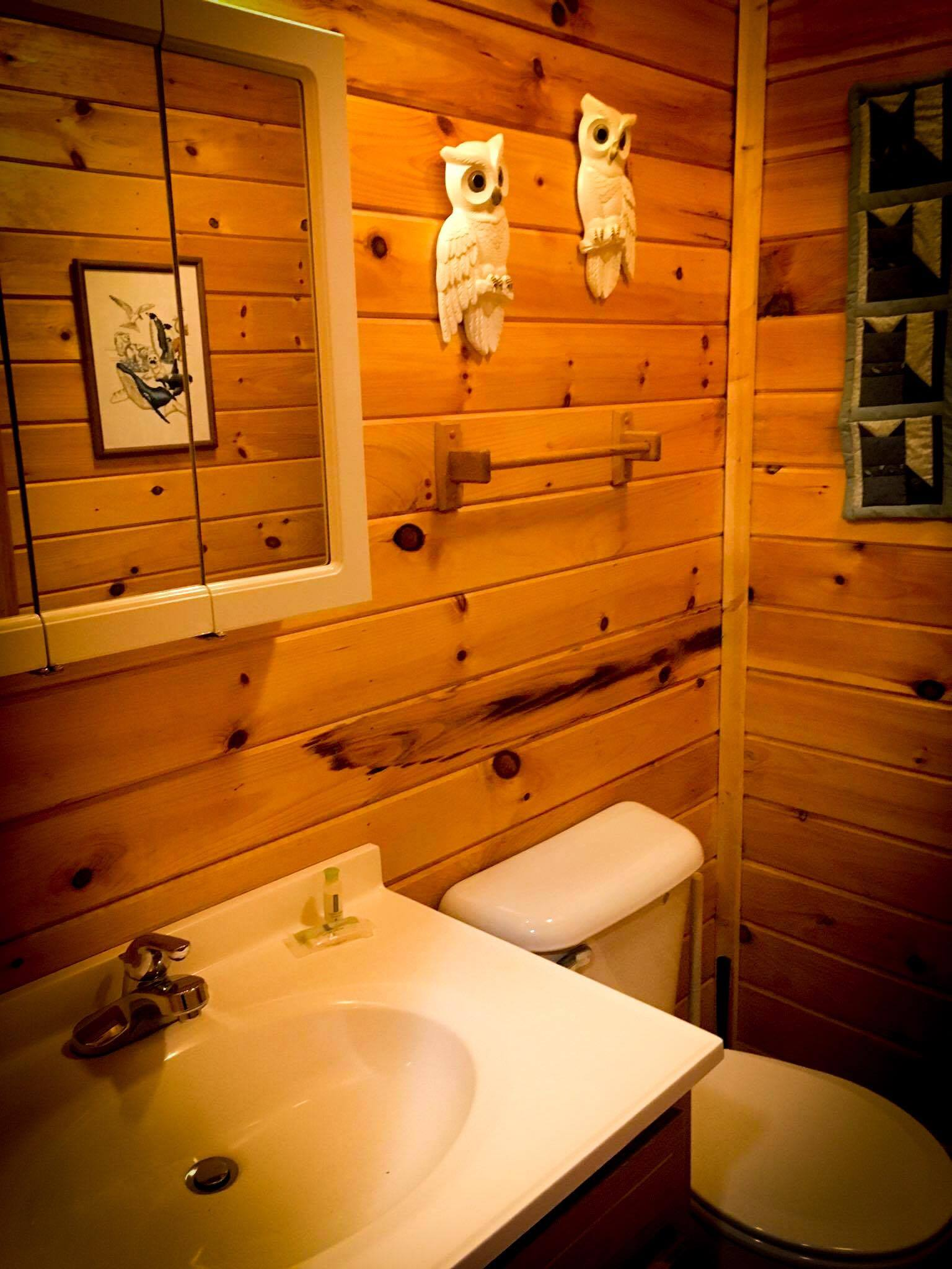 Peaceful Palace Bathroom at Red River Gorge