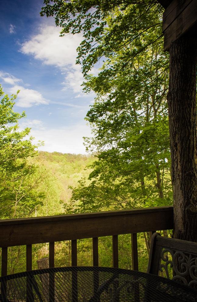 blue skies over natural bridge state park
