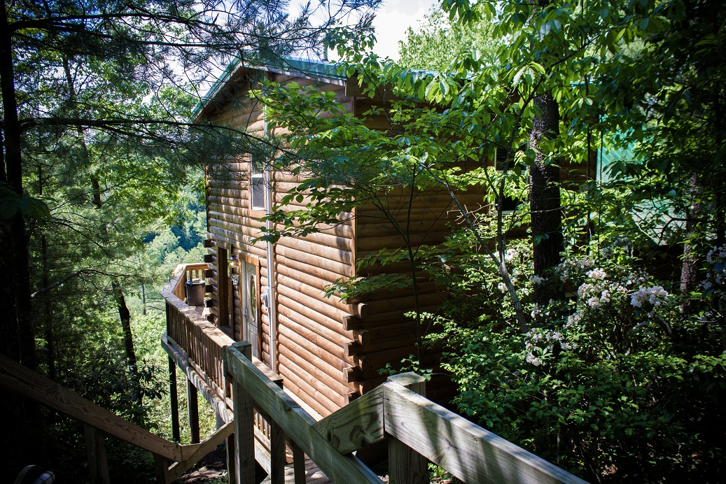 authentic log chalet surrounded by trees