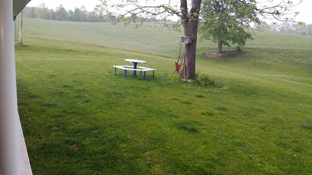 enjoy a picnic in the backyard