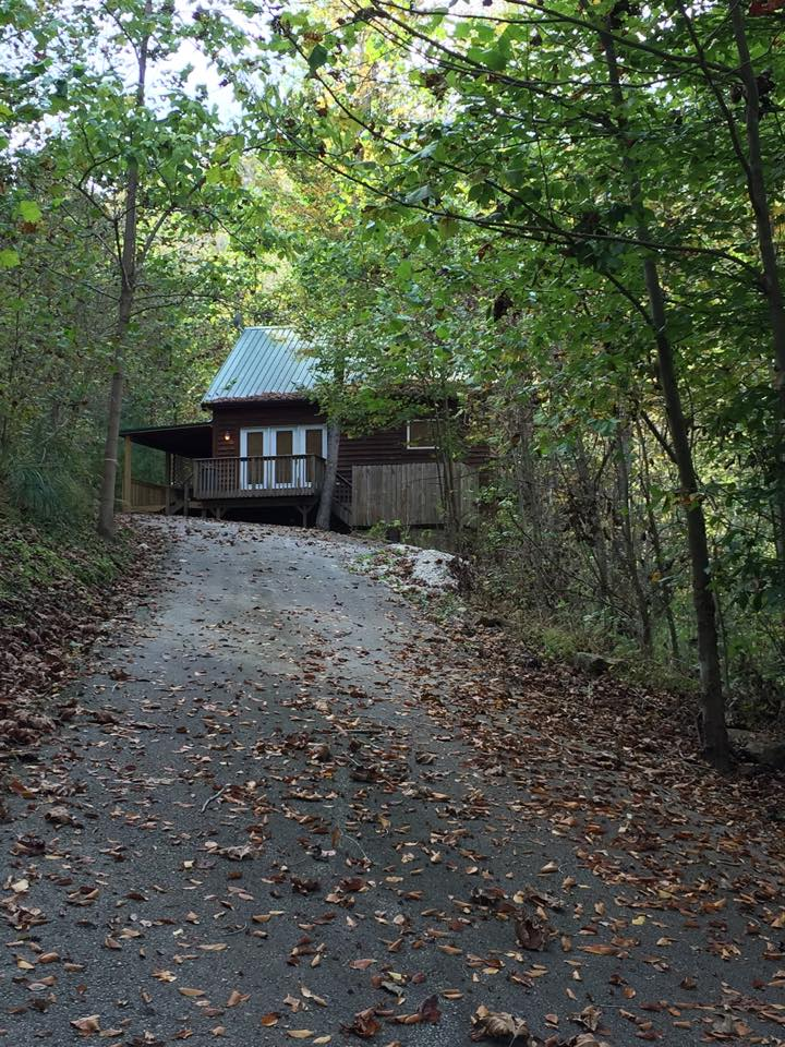 cabin nestled in the red river gorge