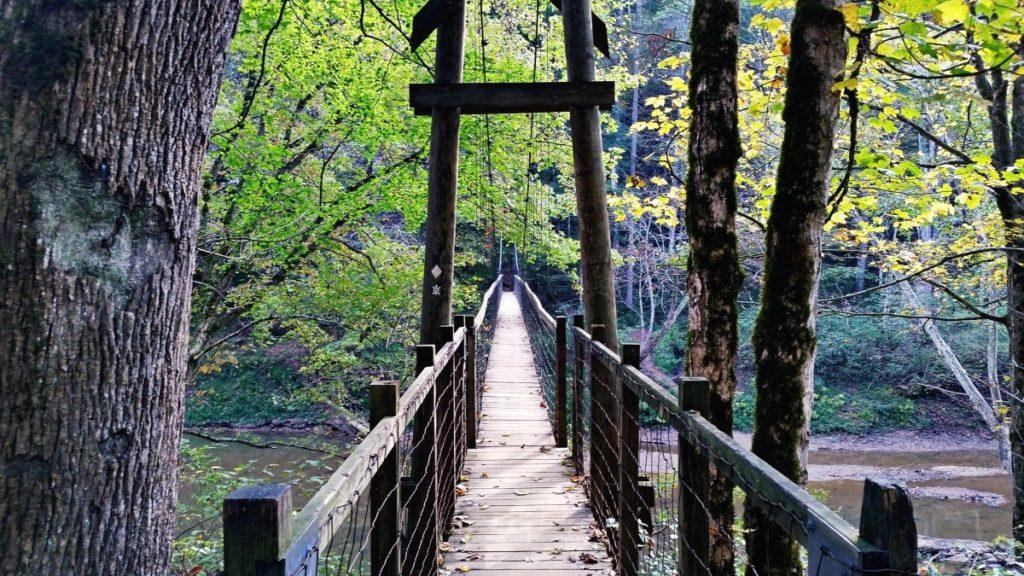 Suspension Bridge1